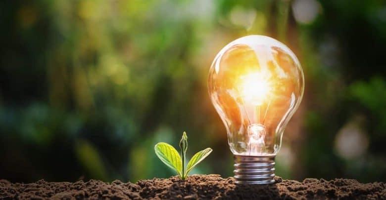 ampoule economie energie